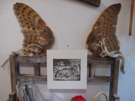 ailes de chouettes et gravure de renard à collier de plantes de sorcières...